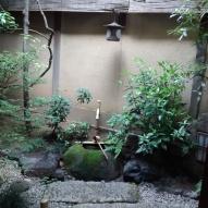 Our room's garden